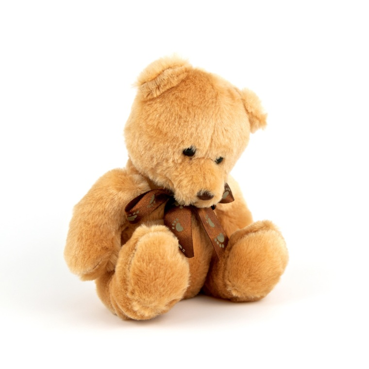 Sad lonely teddy bear isolated on white background. Unhappy and alone doll. Close up.